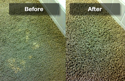 befor after carpet dye
